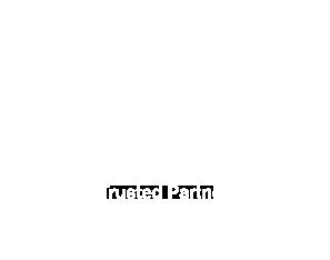 Partner-Icon